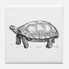 Tortoise Tile Coaster