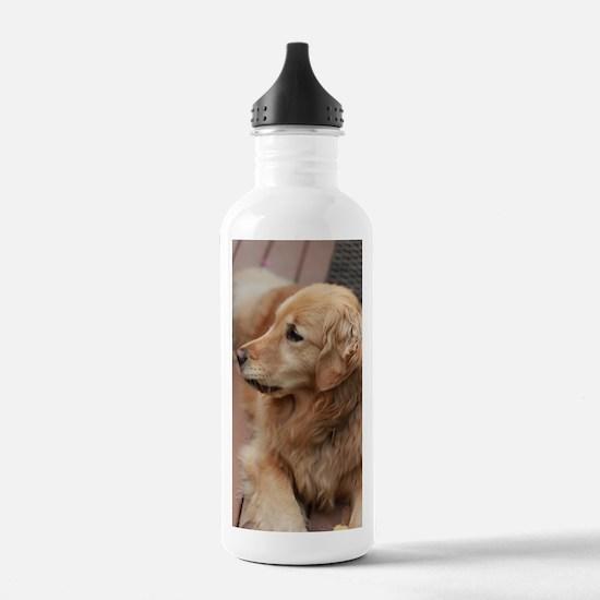 Cute Tamers Sports Water Bottle