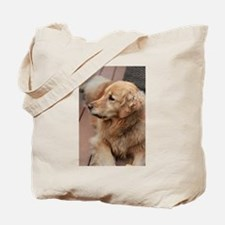golden retriever serious Tote Bag