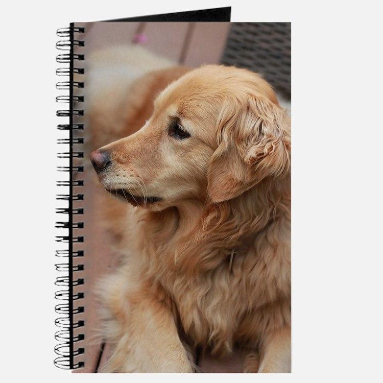 golden retriever serious Journal