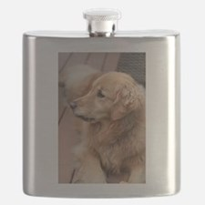 golden retriever serious Flask