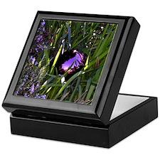 Purple Gazing Ball Keepsake Box