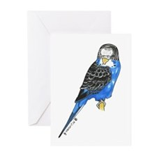 Marty Bird  Greeting Cards (Pk of 20)