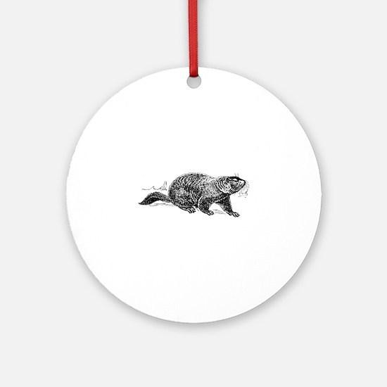 Ground hog Round Ornament