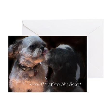 Hilarious Shih Tzu Greeting Cards (Pk of 10)