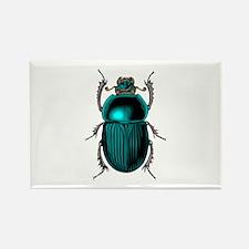Beetle Bug Magnets