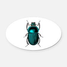 Beetle Bug Oval Car Magnet