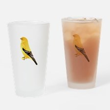 Gold finch Drinking Glass