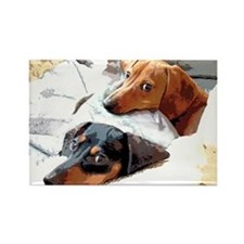 Naptime Dachshund Dogs Rectangle Magnet