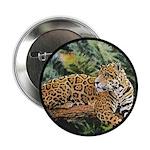 Jaguar on Branch 2.25