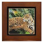Jaguar on Branch Framed Tile
