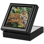 Jaguar on Branch Keepsake Box
