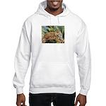 Jaguar on Branch Hooded Sweatshirt