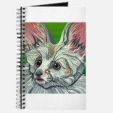 Fennec Fox Wildlife Journal