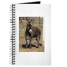 Ass - Donkey Journal