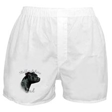 Staffy Dad2 Boxer Shorts
