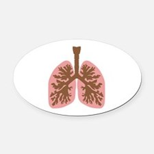 Lungs and bronchus Oval Car Magnet