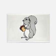Squirrel with Acorn in hands Magnets