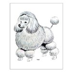 Poodle Dog Small Poster
