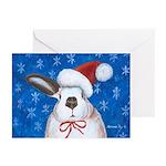 Santa Rabbit Greeting Cards (Pk of 10)