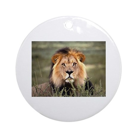 Male African lion Ornament (Round)