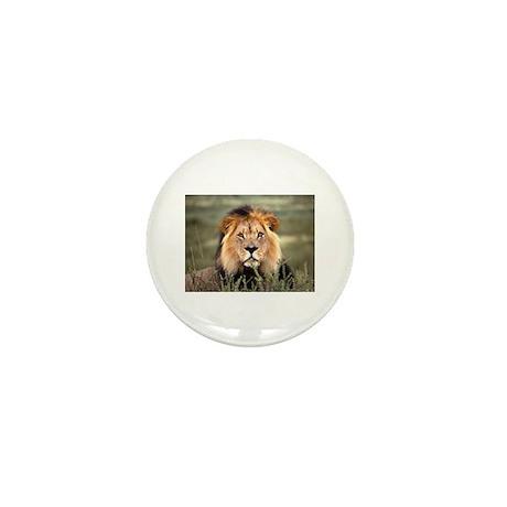Male African lion Mini Button