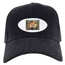 Male African lion Baseball Hat