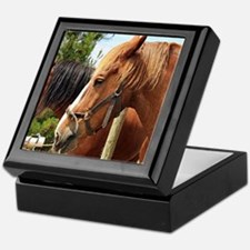 Cute Australian draught horse Keepsake Box