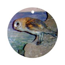 barn owl 2 Ornament (Round)