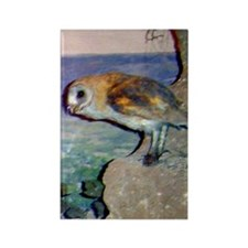 barn owl 2 Rectangle Magnet
