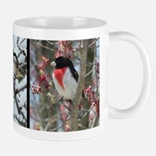 Great Lakes Birds Mugs