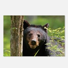 Cute Black bear Postcards (Package of 8)
