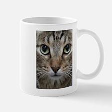 Cute Striped cat Mug