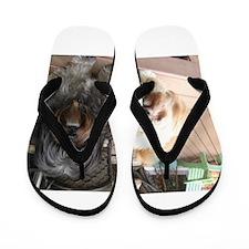 dark and light dog Flip Flops