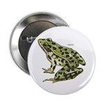 Leopard Frog Button