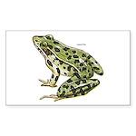 Leopard Frog Rectangle Sticker