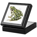 Leopard Frog Keepsake Box
