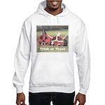 Halloween Hay Hooded Sweatshirt