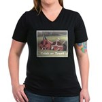 Halloween Hay Women's V-Neck Dark T-Shirt