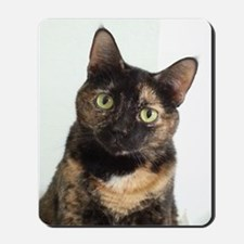 Tortie Cat Mousepad