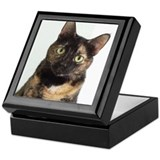 Tortoiseshell cat Square Keepsake Boxes
