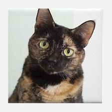 Tortie Cat Tile Coaster