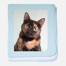 Tortie Cat baby blanket