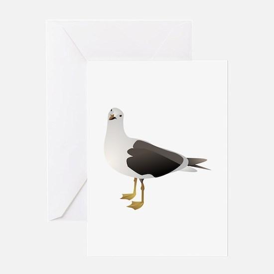 Sea gull Greeting Cards