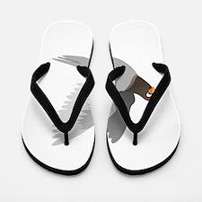 A Flying Pigeon Flip Flops