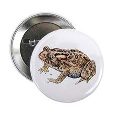 Toad Button
