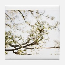 White Blossoms II Tile Coaster