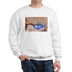 Creation n' Science Sweatshirt