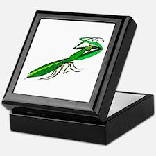 Green color Grasshopper Keepsake Box