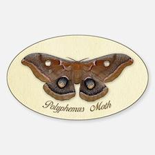 Polyphemus Moth Oval Decal